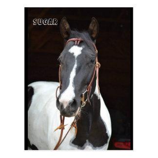 """Carte postale """"sucre """" de cheval appelée par"""