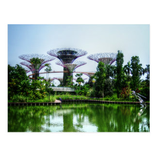 Carte Postale Supertrees et lac de libellule