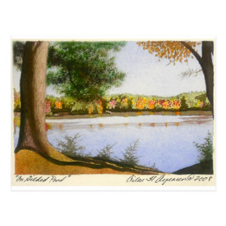 Carte Postale Sur l'étang doré