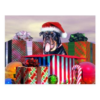 Carte Postale Surprise de Noël de rottweiler