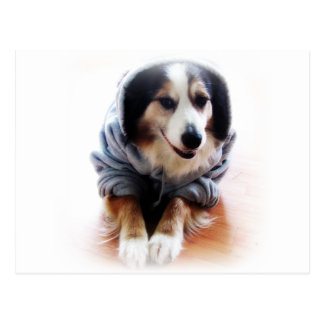 Carte Postale Sweat - shirt à capuche de port de chien de