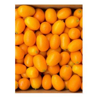 Carte Postale Tas des kumquats oranges dans la boîte en carton