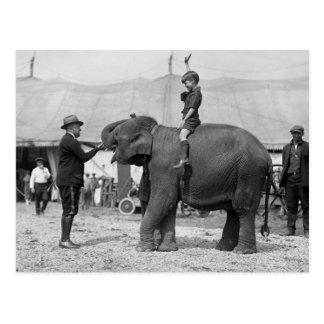 Carte Postale Teddy Roosevelt au cirque : 1924