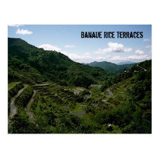 Carte Postale Terrasses de riz de Banaue