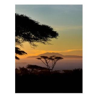 Carte Postale Terres des Acacias