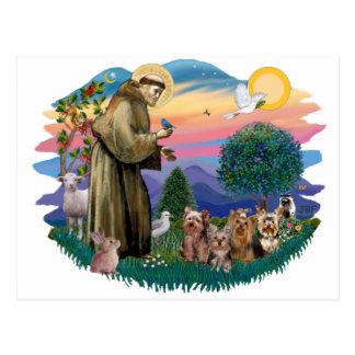 Carte Postale Terriers de Yorkshire (quatre)