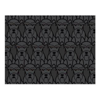 Carte Postale Terriers écossais