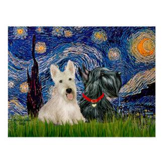 Carte Postale Terriers écossais (deux-BW) - nuit étoilée