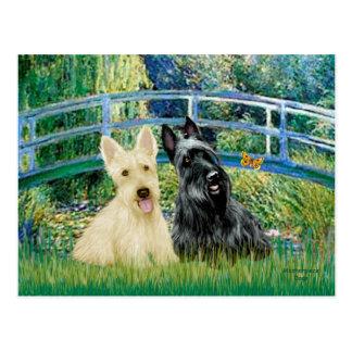 Carte Postale Terriers écossais (deux-BW) - pont