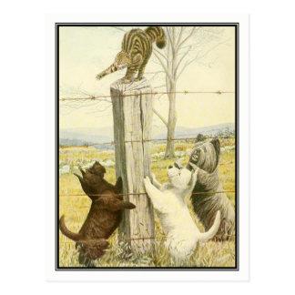 Carte Postale Terriers vilains par Louis Agassiz Fuertes