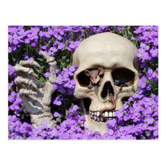 Carte Postale Tête de mort - Gothic/carte postale