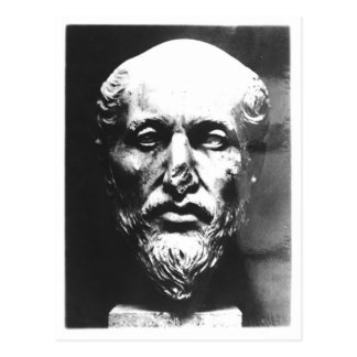 Carte Postale Tête de Plotinus