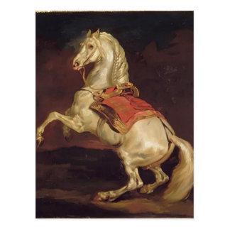 Carte Postale Theodore Gericault : L'étalon du napoléon,