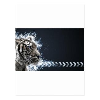 Carte Postale Tiger