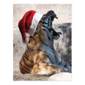 Carte Postale Tigre de Bengale de Noël