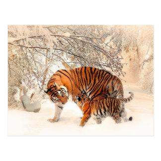 Carte Postale Tigre et petit animal - tigre
