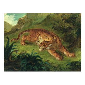 Carte Postale Tigre et serpent, 1858