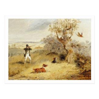 Carte Postale Tir de faisan (huile sur la toile) 2