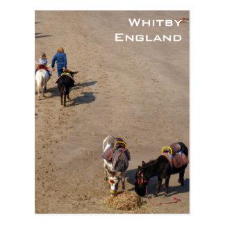 Carte Postale Tours d'âne sur la plage de Whitby, North
