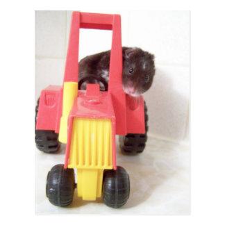 Carte Postale tracteur conduisant Noé