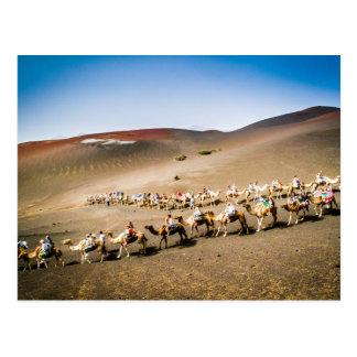Carte Postale Train de chameau à Lanzarote