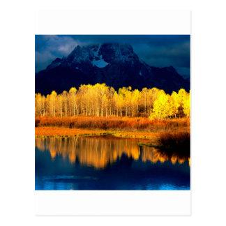 Carte Postale Tremblement Aspen Moran Tetons grand Wyoming de