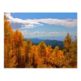 Carte Postale Trembles au Nouveau Mexique