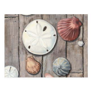 Carte Postale Trésors de bord de la mer