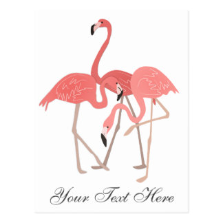 Carte Postale Trio rose de flamant