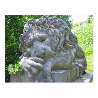 Carte postale triste de lion