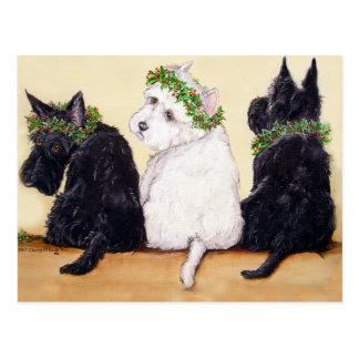 Carte Postale Trois terriers sages