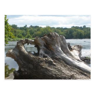 Carte Postale Tronçon sur James River