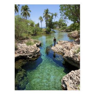 Carte Postale Trou d'alligator, ville noire de rivière, Jamaïque