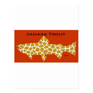 Carte Postale Truite du Sahara