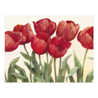 Carte Postale Tulipes rouges