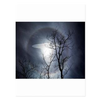 Carte Postale UFO avec les branches d'arbre silhouettées