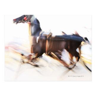 Carte Postale Un cheval courant à une grande vitesse concurrence