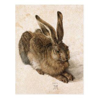 Carte Postale Un jeune lièvre par Albrecht Durer