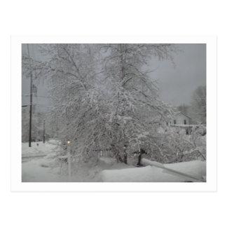 Carte Postale Un jour d'hiver morne