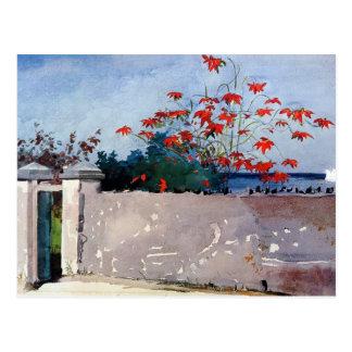Carte Postale Un mur dans l'aquarelle de Nassau par Winslow