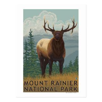 Carte Postale Un parc national plus pluvieux, scène de