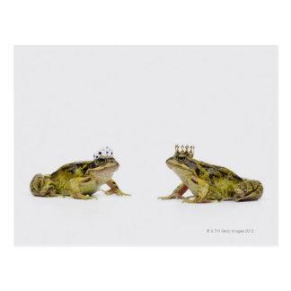 Carte Postale une grenouille de roi et de reine regardant l'un