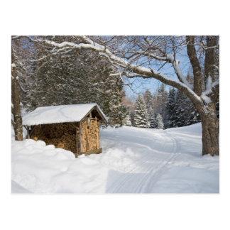 Carte Postale Une scène neigeuse au peu d'étang de Lyford d'AMC