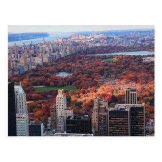 Carte Postale Une vue d'en haut : Automne dans le Central Park