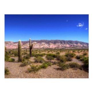 Carte Postale Usines de cactus de Salta Argentine et colline