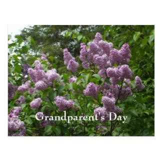 Carte Postale Usines de Woody Bush-Syringa-Fleurissantes lilas