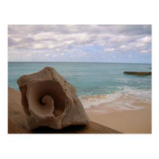 Carte Postale Vacances de paradis de plage du coquillage  