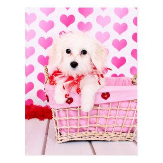 Carte Postale Valentines - coton de Tulear - Sophie