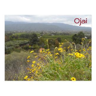 Carte Postale Vallée d'Ojai, la Californie