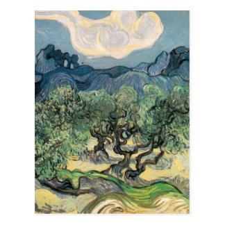 Carte Postale Van Gogh - les oliviers (1889)